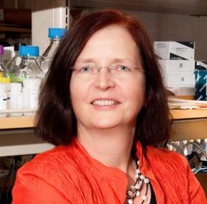 Dr. Steffi Oesterreich